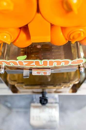 Venta y alquiler de exprimidor de naranjas profesional para hosteleria