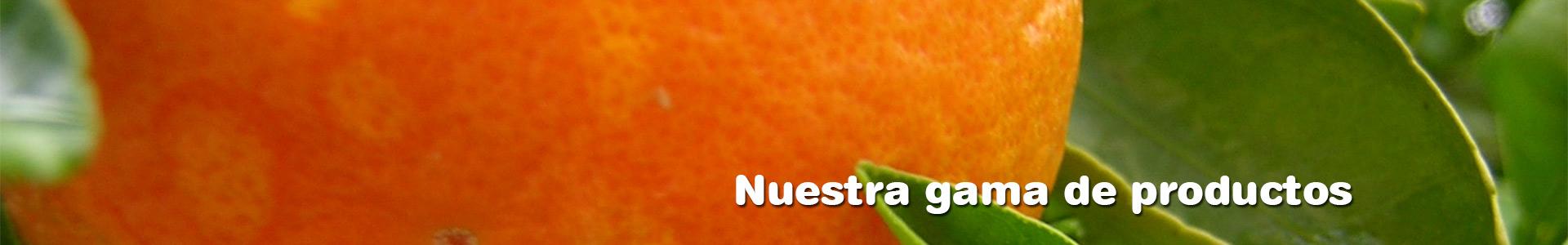 Exprimidores de naranjas