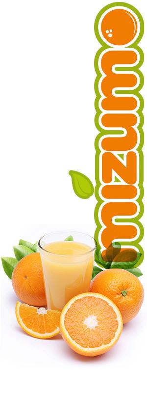 Distribuidor de exprimidor de naranjas profesional