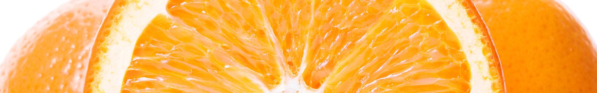 Repuestos y accesorios de nuestros exprimidores de naranjas