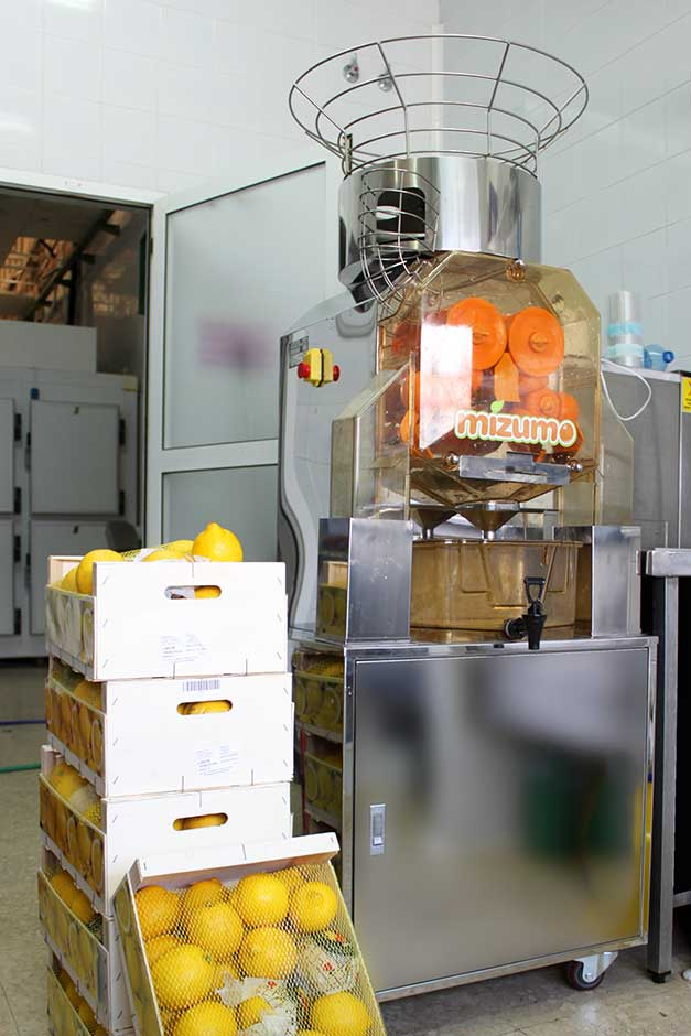 Exprimidores de naranjas que ayudan al exito - Granizados Granny