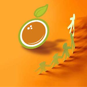 Exprimidor profesional de naranjas en alquiler o venta